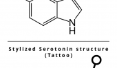 Stylized Serotonin Comparison